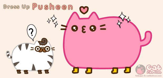 มาแต่งตัวน้องแมวพูชินกันดีกว่า !!!