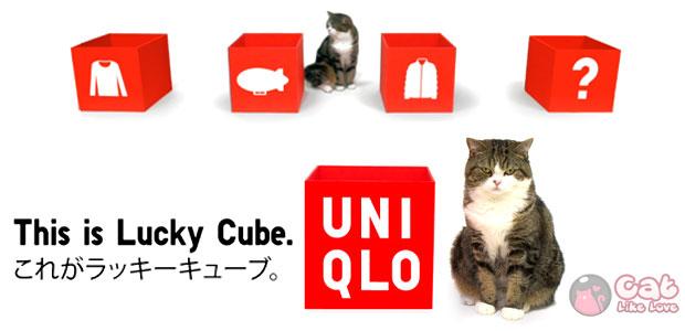 Lucky Cube with Maru กิจกรรมสุดน่ารักที่ UNIQLO ซานฟรานซิสโก