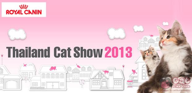 เก็บตกงาน Thailand Cat Show 2013 ครั้งที่ 13 เพื่อคนรักแมว