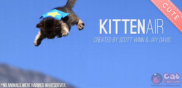 Kitten Air…ใครว่าเหมียวบินม๊ายด๊ายยย :3