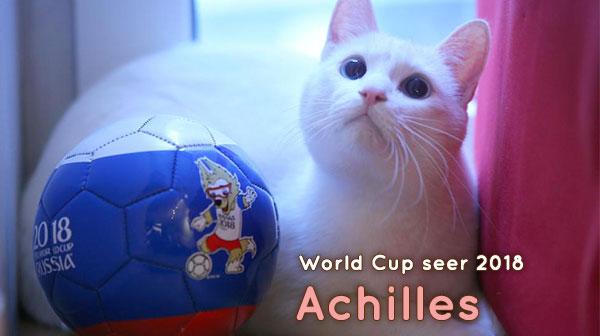 คุกกี้เสี่ยงทายยังแพ้…อคีลลีสแมวทำนายบอล